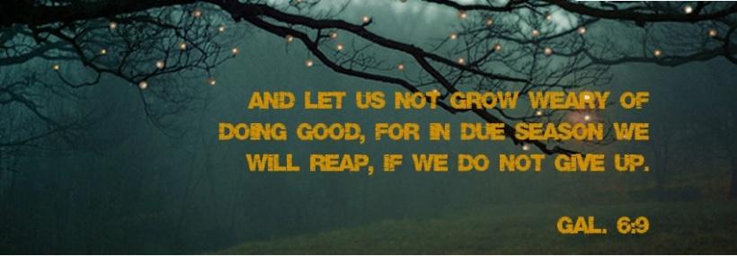 not_grow_weary